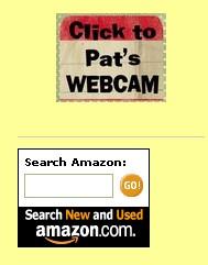 Amazon search button