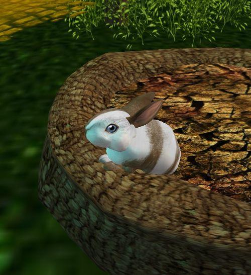 Bunnyhouse_002_001