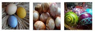 Maria eggs