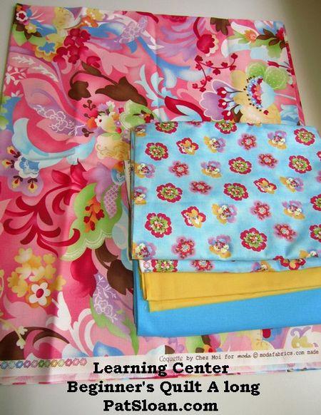 Pat sloan Learning center summer quilt along