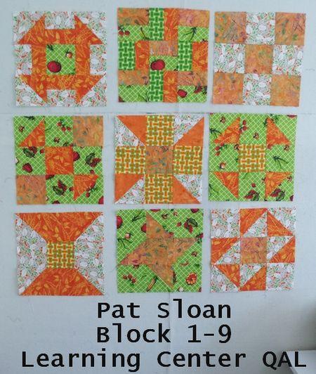 Pat sloan LC block 9 set orange green