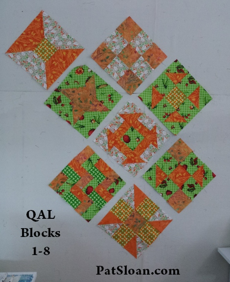 Pat sloan 8 blocks of QAL