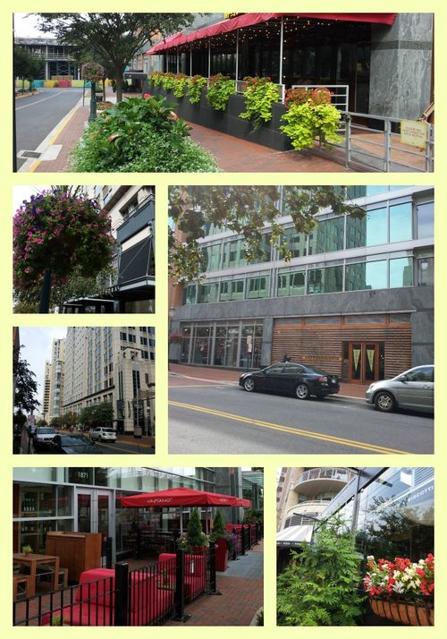 Pat sloan reston collage