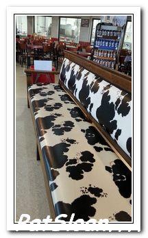 Pat sloan cow 5