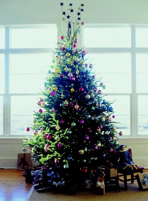 Polly xmas tree