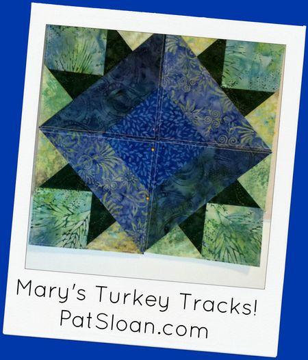Mary turkey tracks