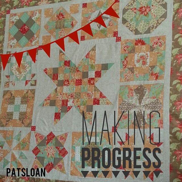 Pat sloan 2013 Sugar Block progress