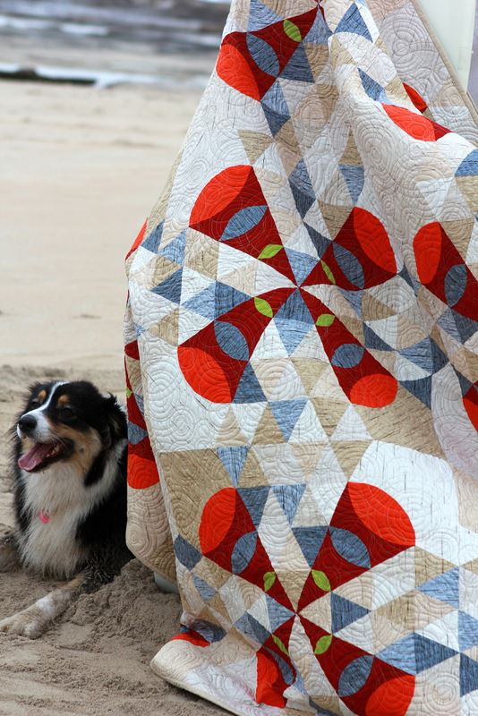 Molly an Australian Shepherd, was our prize model. After rolling around in the sand she decided to nestle up against the quilt.