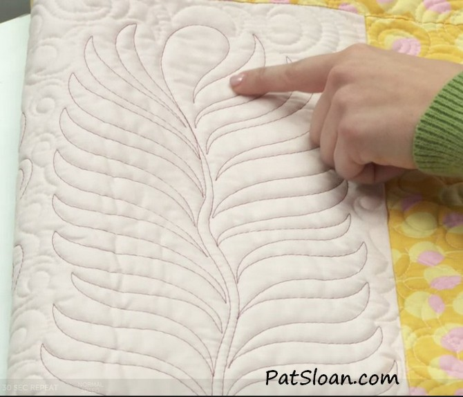 Pat sloan free motion Quilting feathers class review 4