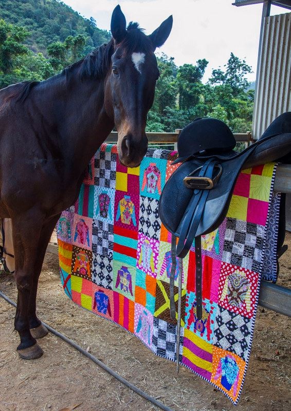 What better model for a Melbourne Cup themed quilt than an ex racehorse. This lovely filly is retired and living in Cairns