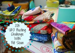 Pat sloan 2015 UFO busting challenge