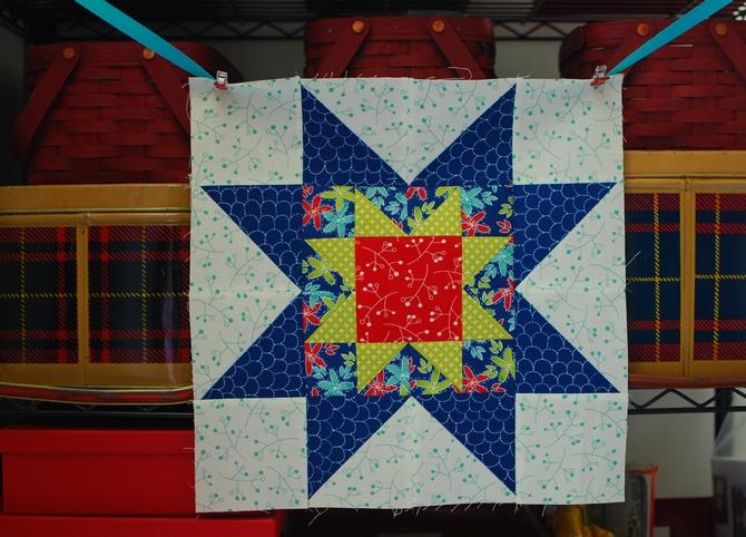 Pat Sloan My Secret Garden colorway 2 block 6