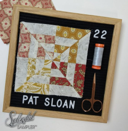 Pat Sloan Splendid Sampler 22 Debbie Brown  block