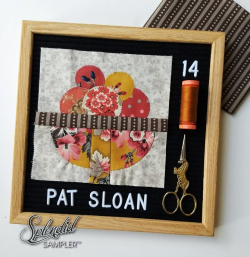 Pat Sloan Splendid Sampler 2 Jo Avery block