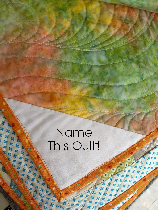 Pat sloan multi 2 inch square quilt pic 4