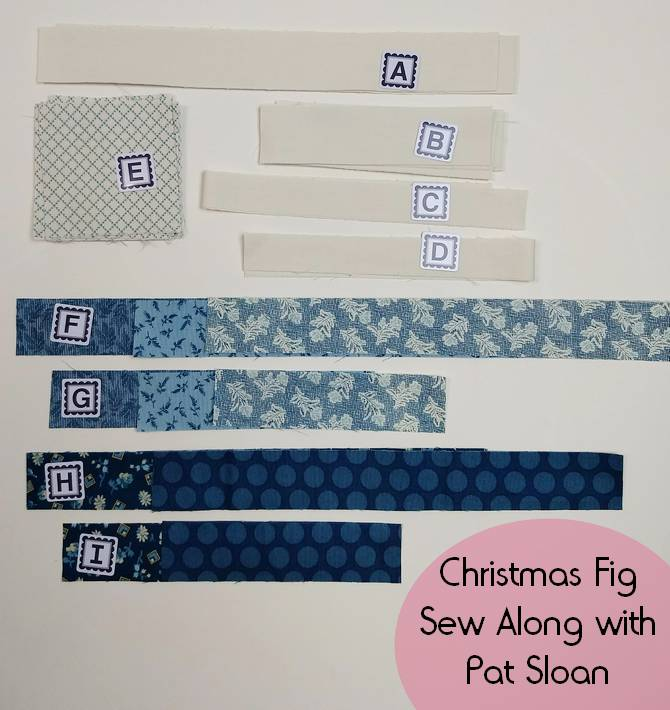 Pat Sloan Christmas blue Fig block 5 pic 2