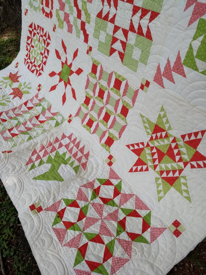 Pat Sloan Christmas Fig red green quilt 6