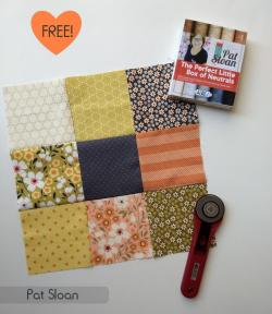 Pat Sloan ultimate beginner block 2 pat sloan fabric 2