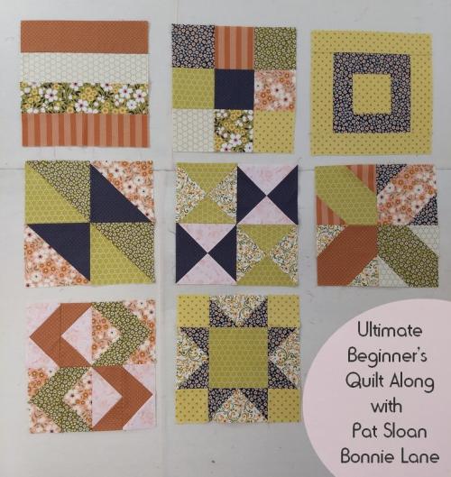 Pat sloan ultimate beginner block 8 bl