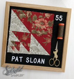 Pat Sloan Splendid Sampler 2 block 55