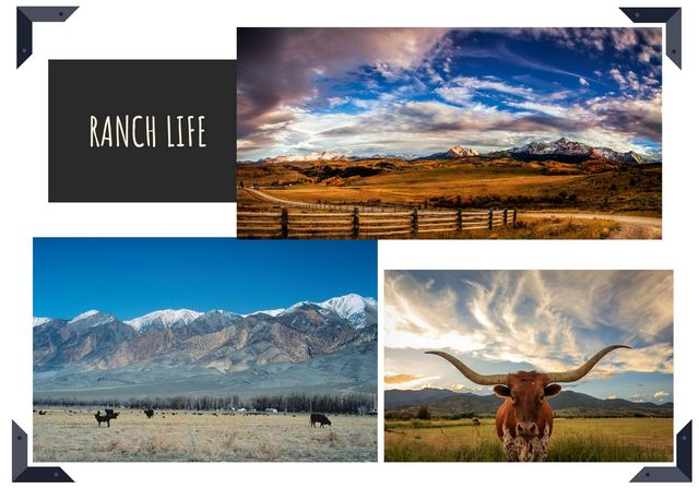 Pat sloan out west block 4 ranch life
