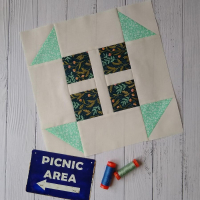 Going on picnic 5