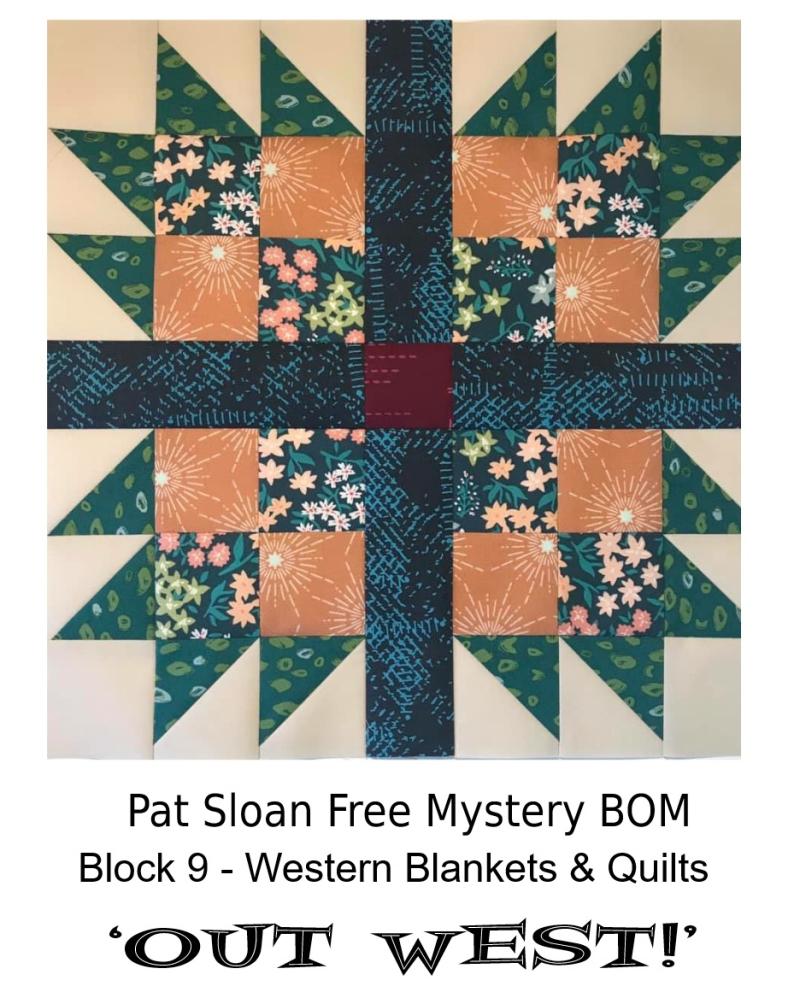 Pat Sloan Out West  block 9 pattern