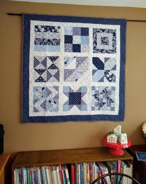 Pat sloan ultimate beginner quilt along blue