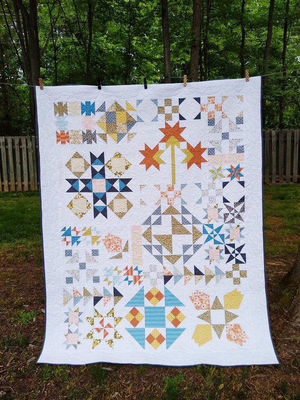 Pat sloan 2020 charity quilt 1