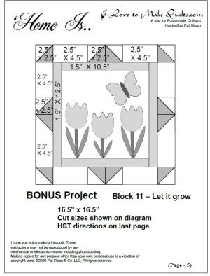 Pat sloan block 11 bonus