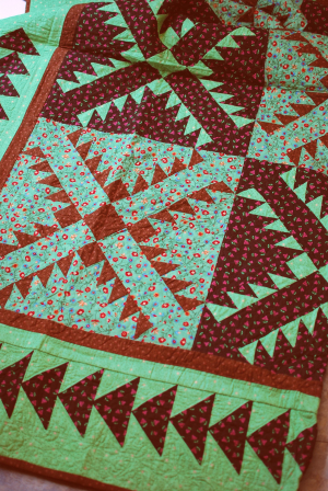 2007 i cant believe im quilting beyond the basics 2007 4